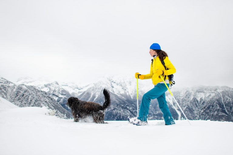 black dog with a girl on a walk with snowshoes in the mountains.